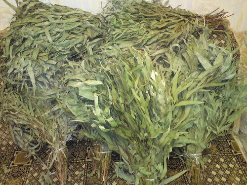 Купить Листья Эвкалипта (лучший антисептик) 400-500гр